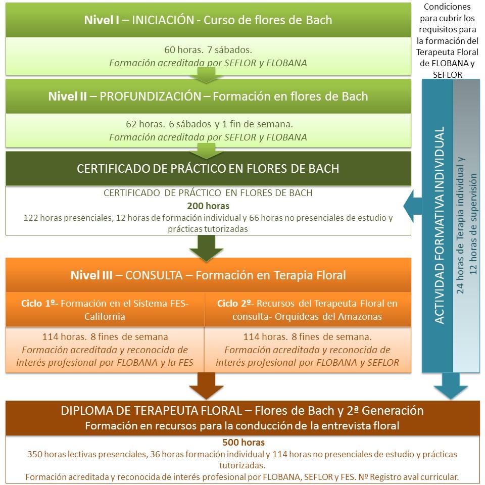 Esquema_formación_terapia_floral_Flobana
